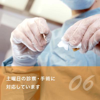 06.土曜日の診察・手術に対応しています